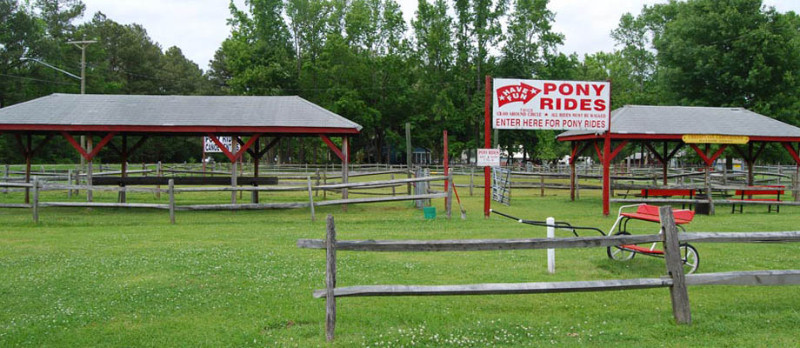 pony-rides-at-chesapeake-campground-in-virginia