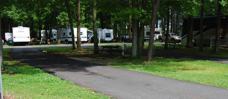 campsites-at-chesapeake-campground-in-virginia