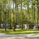 campsites at Rainbow Acres Campground