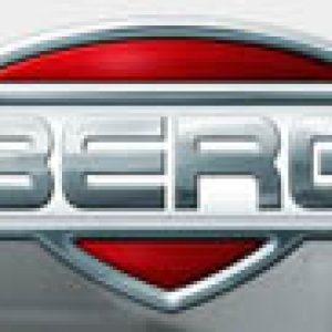 Berg Toys USA logo