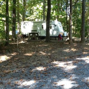 campsite in the trees at Sugar Hollow Campground