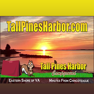 banner for tall pines harbor campground