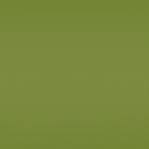 green background for footer