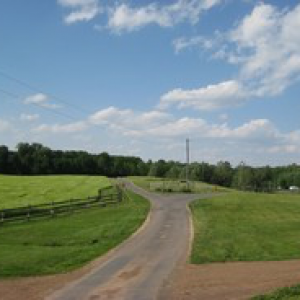campsite road in Greenville Campground