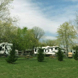 campsite at Wilderness Presidential Resort