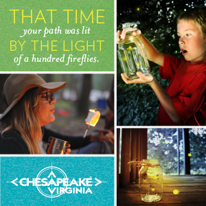 Chesapeake Virginia - that time your path was lit by the light of a hundred fireflies