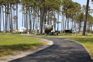 campsites at cherrystone family campground at cape charles va
