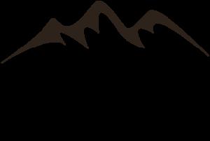 wild energy logo